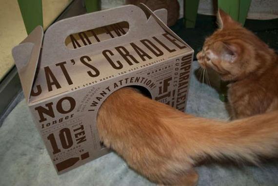 Cat's Cradle - концепт кошачьей переноски от Erin Zingre