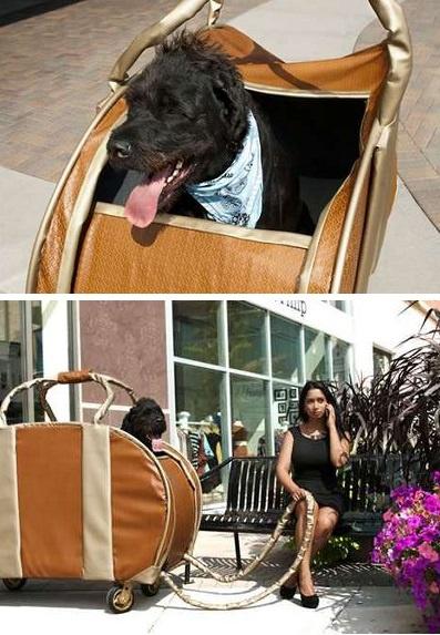 Big Dog Purse от Carmichael Collective - забавная переноска для собак крупных пород